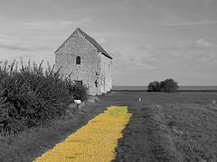 yellow_brick_road.jpg